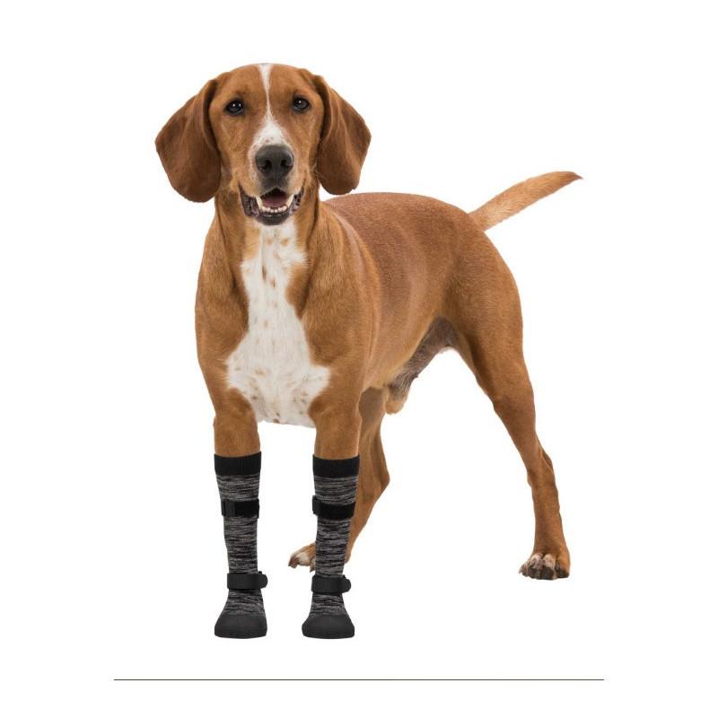 Canisandale Walker sock