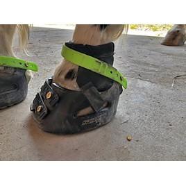 SCOOT boot à l'unité