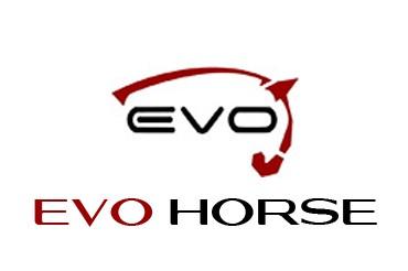logo evo horse